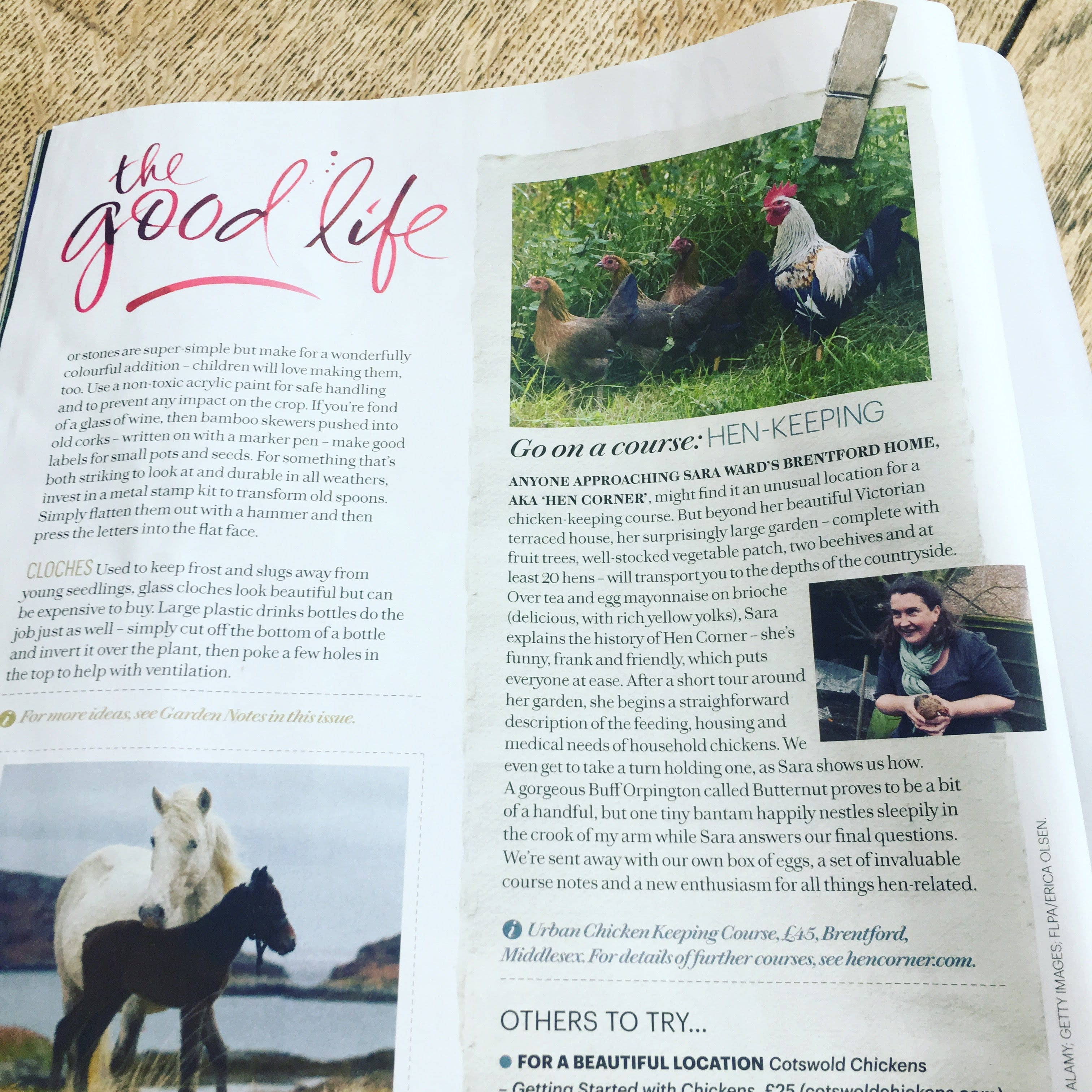It Was Wonderful To Welcome Country Living Magazine S Features Editor Anna Jury Hen Corner For Urban Hens Keeping Ens In London Last Summer
